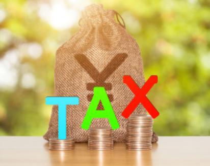 一般纳税人怎么报税?报税时有哪些细节要做好?