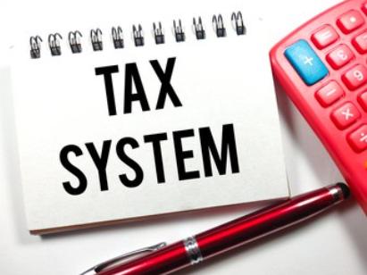 小规模纳税人如何申报?