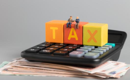 一般纳税人进项税抵扣是什么意思?